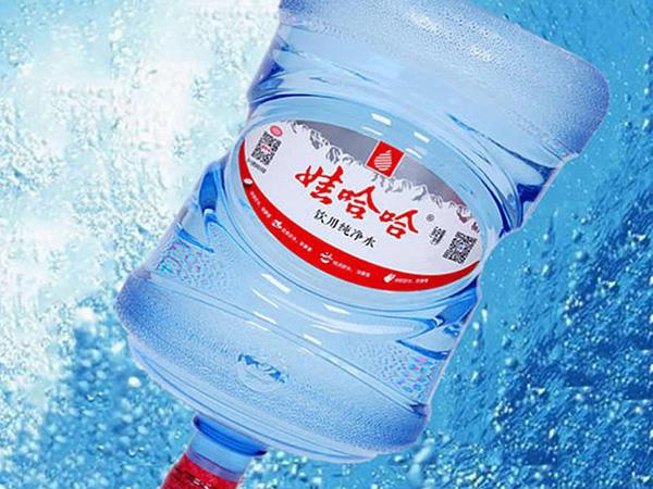 娃哈哈纯净水 16.8升